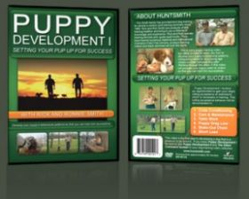 Puppy Development 1 DVD