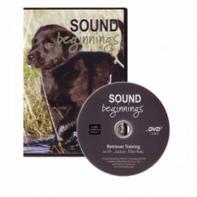 Sound Beginnings DVD