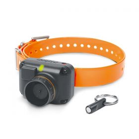 Dogtra STB Beeper